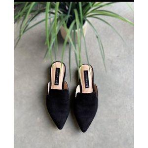 Steve Madden Valent black suede Mule shoes